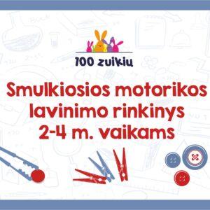 Smulkiosios motorikos lavinimo rinkinys 2-4m.