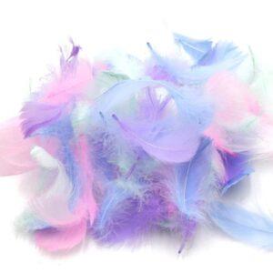 pasteliniu spalvų plunksnelės
