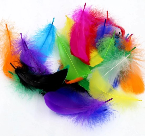 Spalvingos plunksnelės